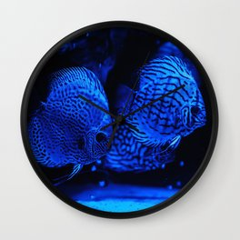 Aquarium fishes in blue light. Wall Clock