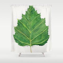 Birch leaf Shower Curtain