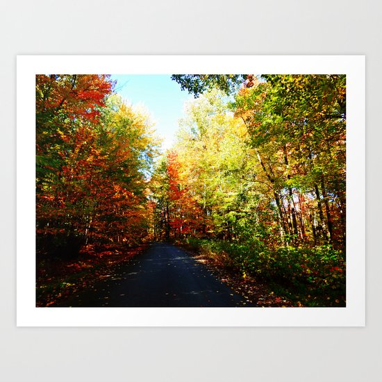 Into the Fall Forest Art Print