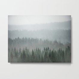 Parallax Monochromatic Misty Pine Forest Landscape Photo Metal Print