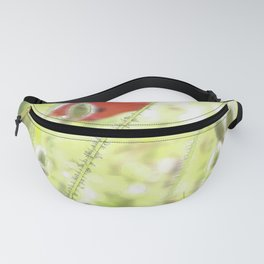 Poppies in the bright sunshine Fanny Pack