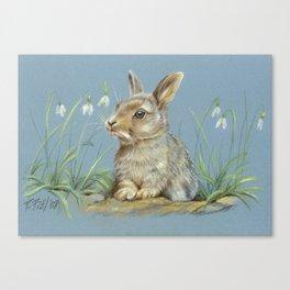 Rabbit spring scene Cute bunny Pastel drawing Animal Art Illustration wildlife Decor for Pet lover Canvas Print