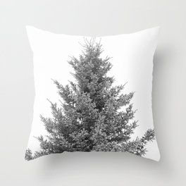 B&W White Spruce Throw Pillow