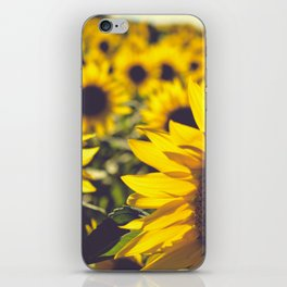 Summer Sunflower Love iPhone Skin