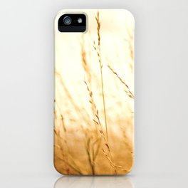 Fields of Bronze iPhone Case