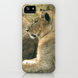 Lion Cub Twins iPhone Case