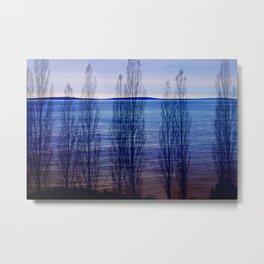 SeaForest Metal Print