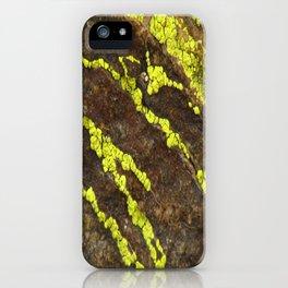 Joshua Tree Lichen - RMD Designs  iPhone Case