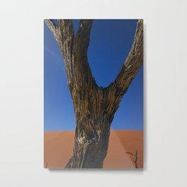Petrified Tree Texture Deadvlei Namibia Metal Print