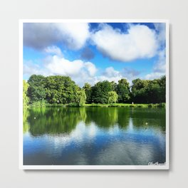 Clear & Blurry  Metal Print