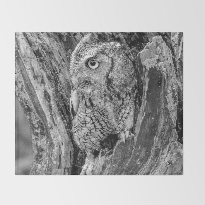 Echo the Screech Owl by Teresa Thompson Throw Blanket