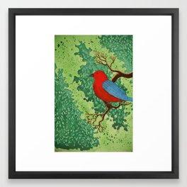 Redbird Framed Art Print