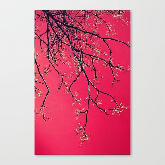 février Canvas Print