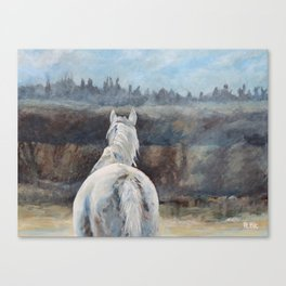 Horse in Morning Mist II Canvas Print