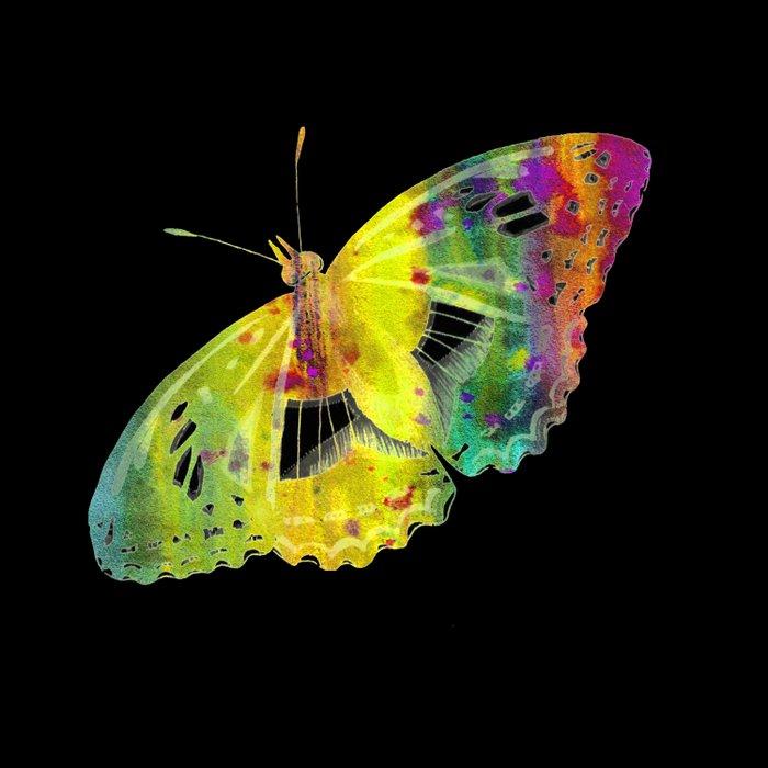 Butterfly QP Duvet Cover