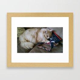 The Great Fluffy  Framed Art Print