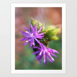 Cute Purple Flowers Art Print