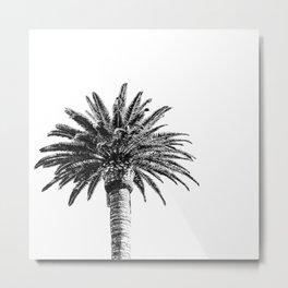 Lush Palm {2 of 2} / Black and White Sky Tree Leaves Art Print Metal Print