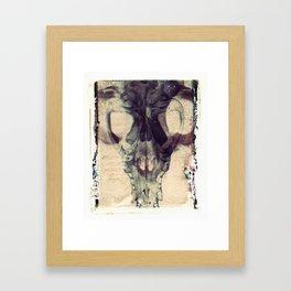 X Ray Terrestrial No. 2 Framed Art Print