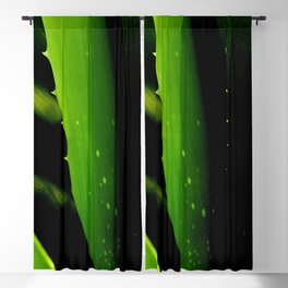 Aloe Vera Blackout Curtain