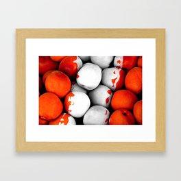 Fruits and berrys II Framed Art Print