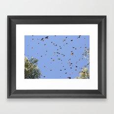 monarch butterflies Framed Art Print
