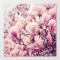 magnolia Canvas Prints featuring Magnolia by Juste Pixx Photography