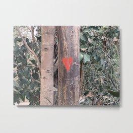 Eucalyptus Love Metal Print