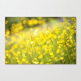 Summer Yellow Canvas Print