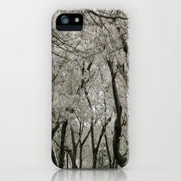 """Crab Apple and Sakura"" iPhone Case"
