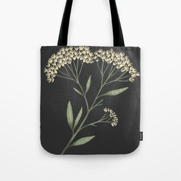 Yarrow / Milfoil illustration on dark background Tote Bag