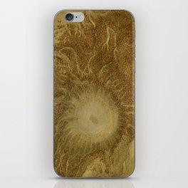 ALASKA: mudcaldera iPhone Skin