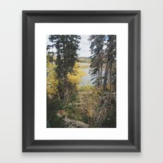 Duck Creek, Utah Framed Art Print