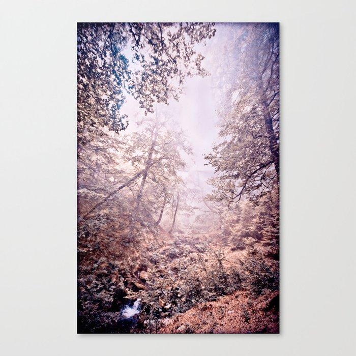 kli Canvas Print