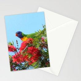 Rainbows and Brushes - Australian Lorikeet Stationery Cards