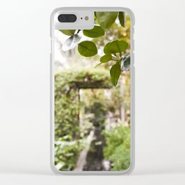 Citrus Above Clear iPhone Case