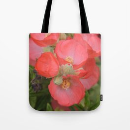 Apricot Mallow Blossoms Tote Bag