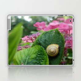 marcel the shell Laptop & iPad Skin