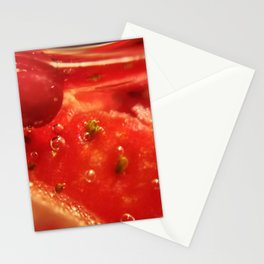 Macro 005 Stationery Cards