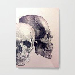 Cromedomes Metal Print