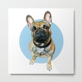 French Bulldog blue spot. Metal Print