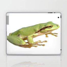 European Tree Frog Laptop & iPad Skin