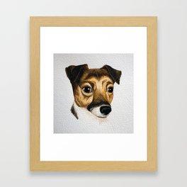 Alfie the Jack Russell Framed Art Print