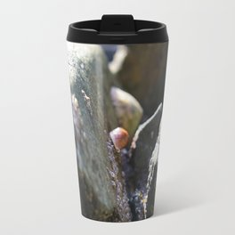 Sea Snails Grazing on Ocean Weathered Rocks with Barnacles Travel Mug
