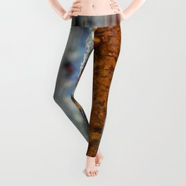 Abstract Glass Leggings