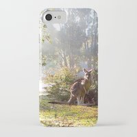 kangaroo iPhone & iPod Cases featuring Kangaroo by Nove Studio