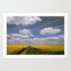 Clouds and Flowers Art Print