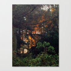 Hunting The Sunrise Canvas Print