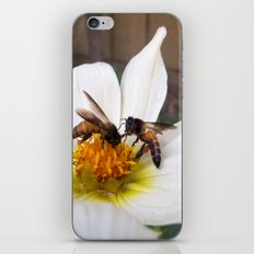 Bees at Work iPhone & iPod Skin