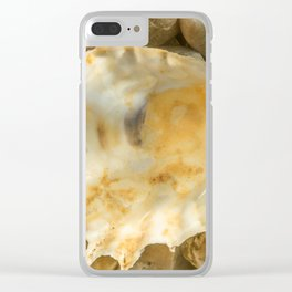 Shell one Clear iPhone Case